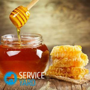 How to store honey at home in the apartment?
