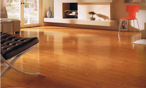 Which laminate floor is better to choose what floorboards do not creak