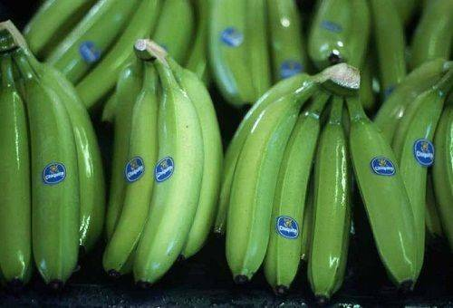 How to store bananas at home so that they do not blacken too quickly?