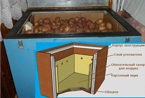 Thermo cabinet for storing vegetables: what to choose or make by yourself