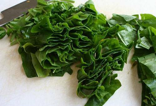 How to save sorrel for the winter: three tested recipes