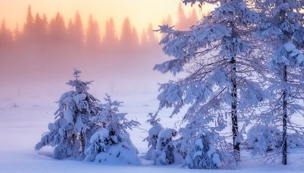 Best winter holiday - New Year in Karelia