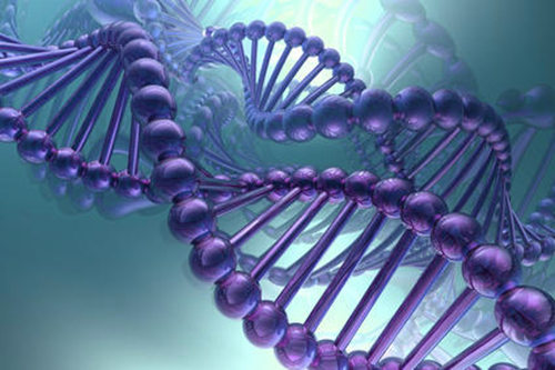 Top 10 amazing facts about DNA