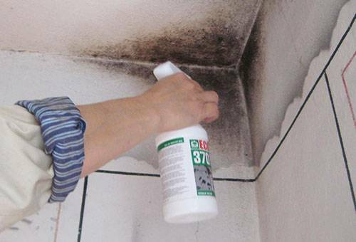 Mold on the walls in the apartment: how to get rid of the harmful fungus at home?