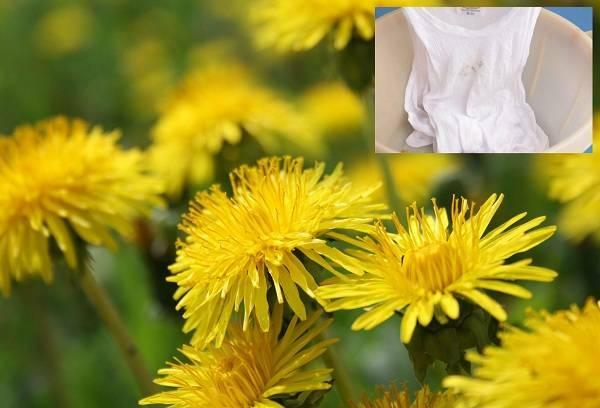 saftflecken in textilien