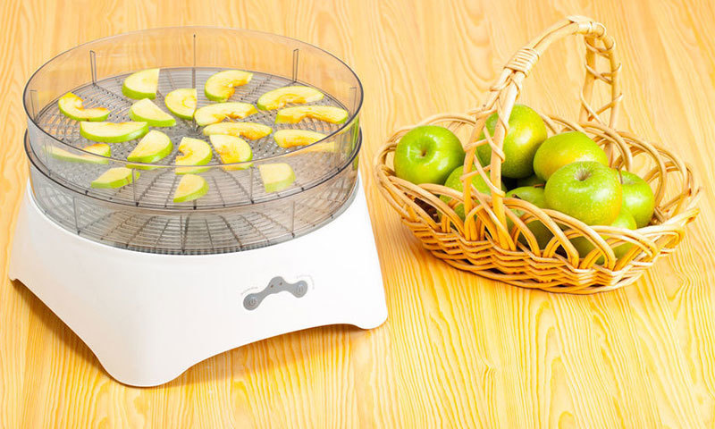 How to choose an electric dryer for fruits and vegetables