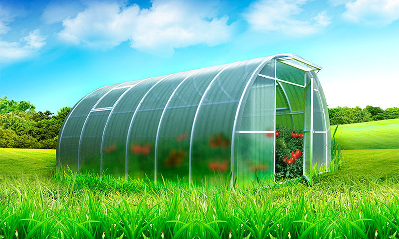 The best polycarbonate greenhouses according to buyers' reviews