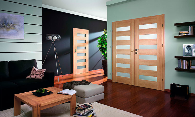 How to choose interior doors - professional advice